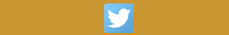 Volg ons op Twitter >